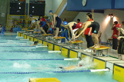 三菱養和マスターズ水泳競技大会